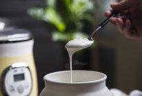 0蔗糖!!爆款无糖自制酸奶|秒杀市售的做法