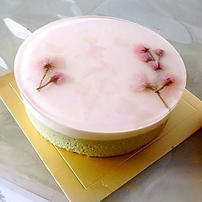 抹茶白巧克力慕斯夹馅樱花蛋糕