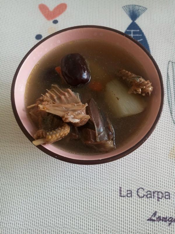 鸽子汤的做法