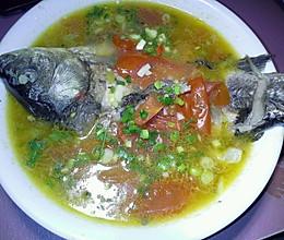 西红柿鲫鱼汤的做法
