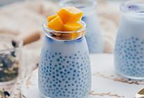 蝶豆花椰浆西米露芒果布丁的做法