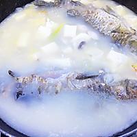 #父亲节,给老爸做道菜#鲫鱼豆腐汤的做法图解9
