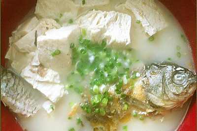 豆腐鲫鱼汤---咸鲜可口汤