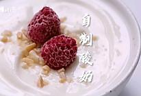 #换着花样吃早餐#北鼎蒸炖锅版原味酸奶的做法