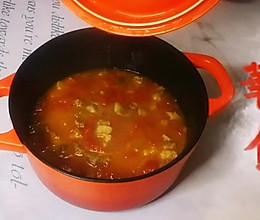 #入秋滋补正当时#厨房小白也能做好的番茄牛腩的做法
