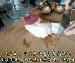 #福气年夜菜#鲜香多汁的香菇猪肉馄饨的做法