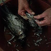冬季暖身药膳鸽的做法图解1
