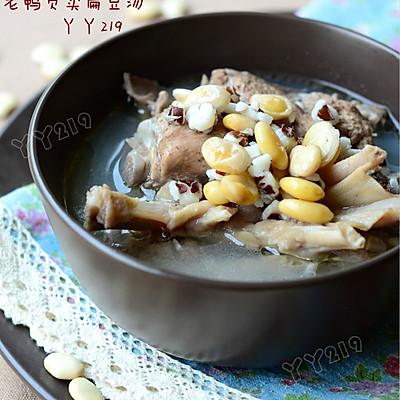 【老鸭芡实扁豆汤】——健脾祛湿汤