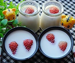 自制牛奶草莓果冻——零添加剂#九阳烘焙剧场#的做法