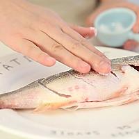 家常清蒸鲈鱼 宝宝辅食微课堂的做法图解5