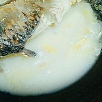 鲤鱼豆腐汤的做法图解14