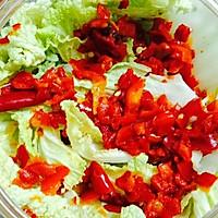 国产泡菜--最简单的剁椒泡大白菜的做法图解4