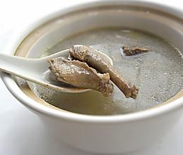 鸽子清补凉汤的做法
