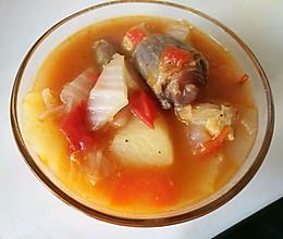 番茄牛尾汤的做法