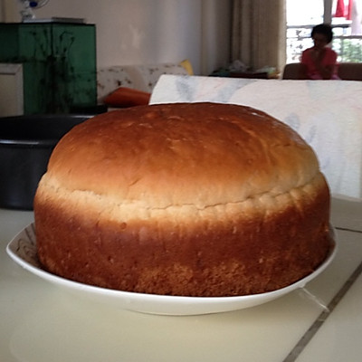 巨蛋肉松面包