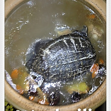滋补甲鱼汤