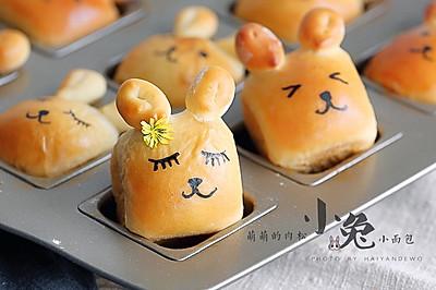 小兔肉松包