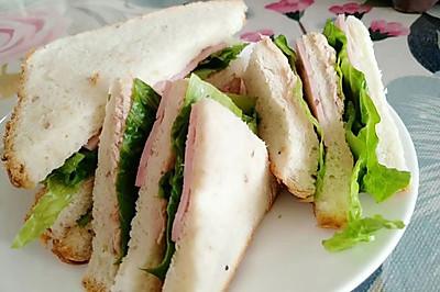 金枪鱼火腿三明治