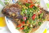 红烧罗非鱼(福寿鱼)的做法