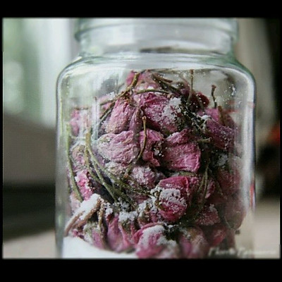 日式盐渍樱花