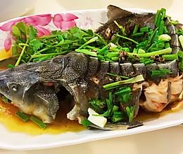 清蒸鲟鱼的做法