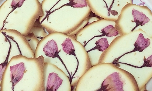 樱花小饼干片的做法