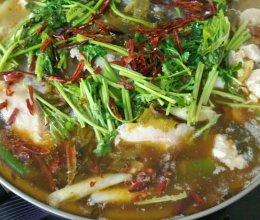简易版家常酸菜鱼。的做法