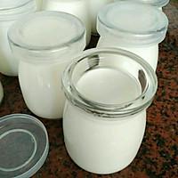 无糖酸奶(超详细版本)的做法图解10