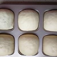咸蛋黄肉松小面包的做法图解14