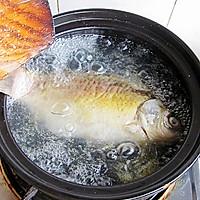 初秋养生汤--山药枸杞鲫鱼汤的做法图解6