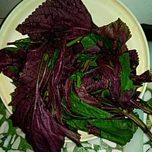 凉拌紫苏叶