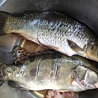 清蒸鳜鱼、小鲤鱼的做法图解2