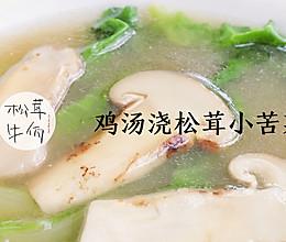 鸡汤浇松茸小苦菜|牛佤松茸食谱的做法