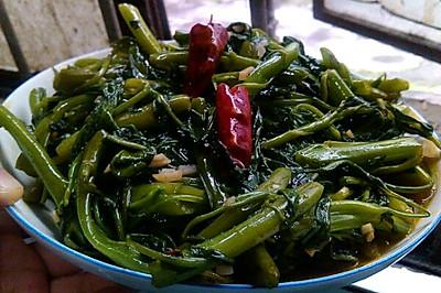 炝炒空心菜(藤菜,钢管菜)