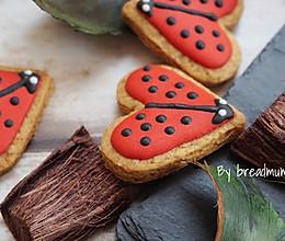 糖霜饼干-瓢虫的做法