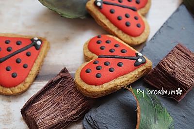 糖霜饼干-瓢虫