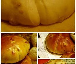 Biga酵头制作及运用(1)》 PP花的做法