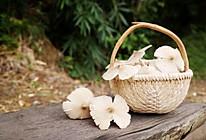 如约而至,夏至珍品夏至菇的做法