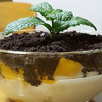 盆栽冰淇淋的做法图解3