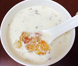 牛奶炖桃胶~满满的胶原蛋白的做法