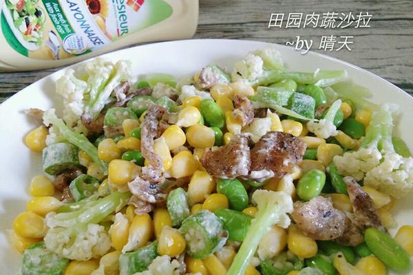 田园肉蔬沙拉#法国乐禧瑞,百年调味之巅#的做法