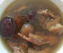 红枣枸杞炖乳鸽的做法