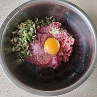 家庭版老北京大懒龙(猪肉大葱肉龙),小时候的味道!简单好吃!的做法图解4