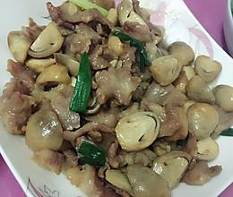 草菇肉片的做法