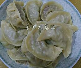 羊肉大葱蒸饺的做法