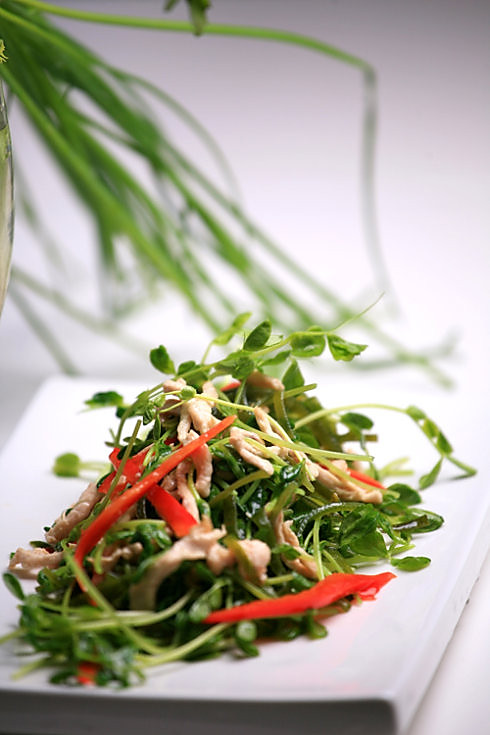 豌豆苗海带炒鸡丝的做法