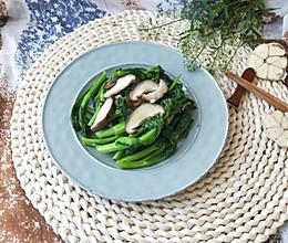蒜泥香菇菜苔(春天的馈赠,减肥养身必备)的做法