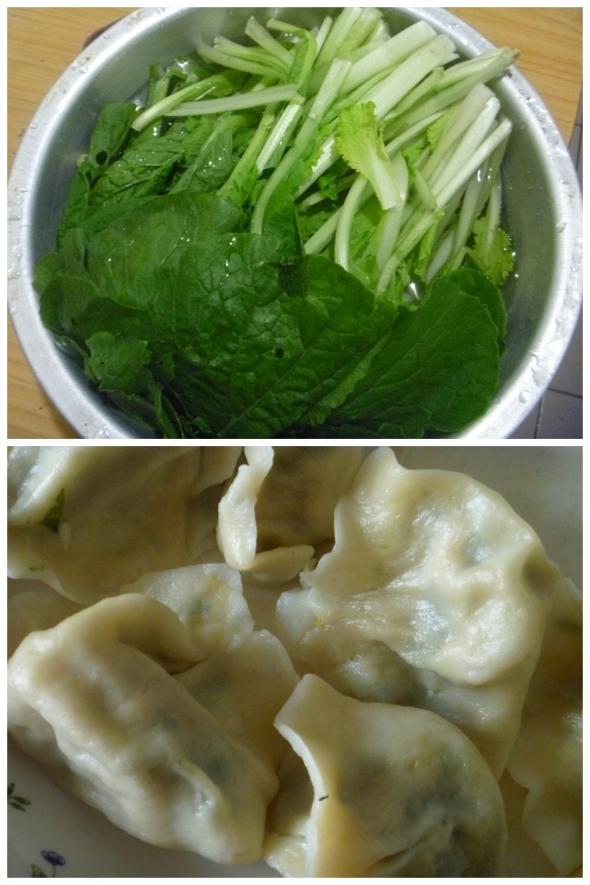 猪肉小白菜饺子