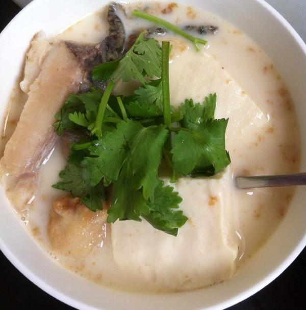 香浓幼滑--豆腐鱼头汤的做法