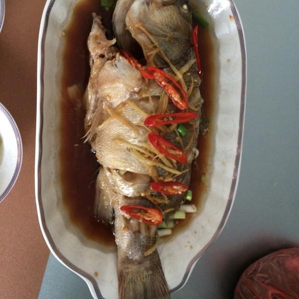 葱油鲤鱼的做法